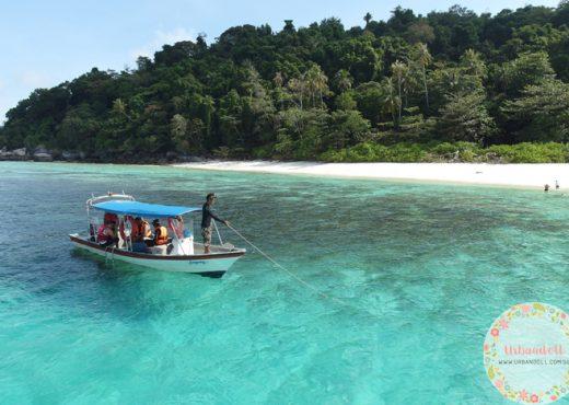 Tioman Snorkeling - 10