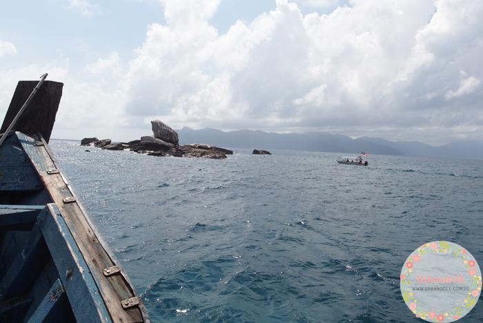 Tioman Snorkeling - 11