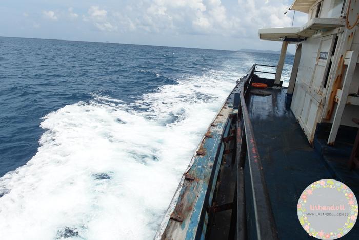 Tioman Snorkeling - 12
