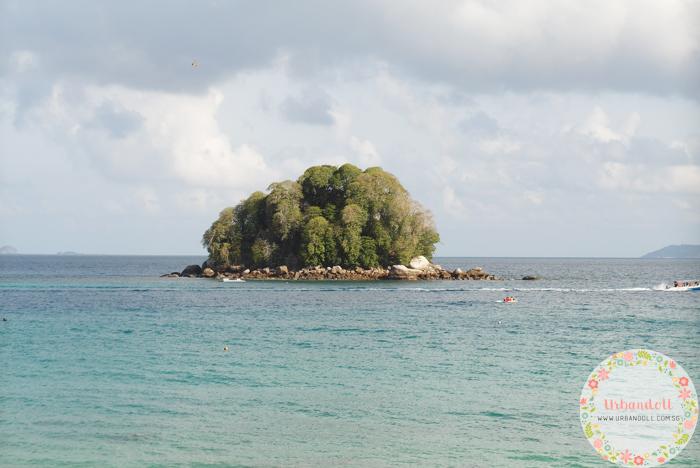 Tioman Snorkeling - 7