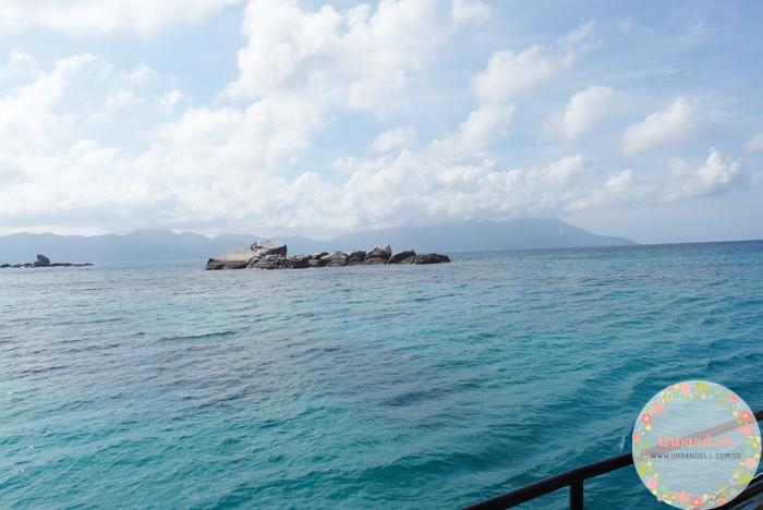Tioman Snorkeling - 8